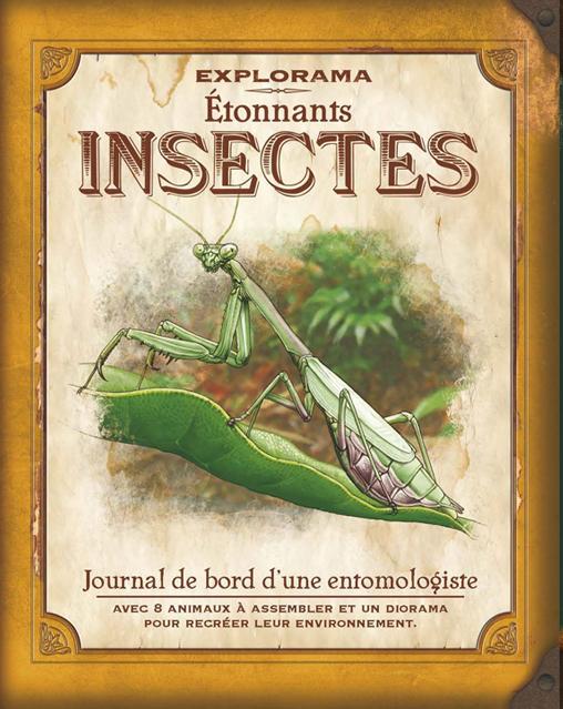 EXPLORAMA_insectes