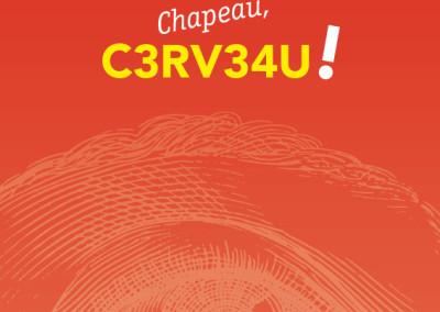 CERVEAU_page_-1